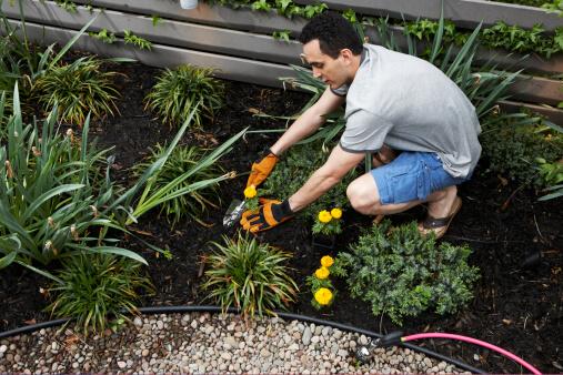Flower Planting Pittsburgh