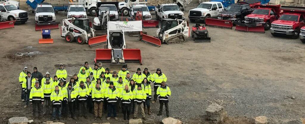 Get to Know Treesdale Landscaping Team